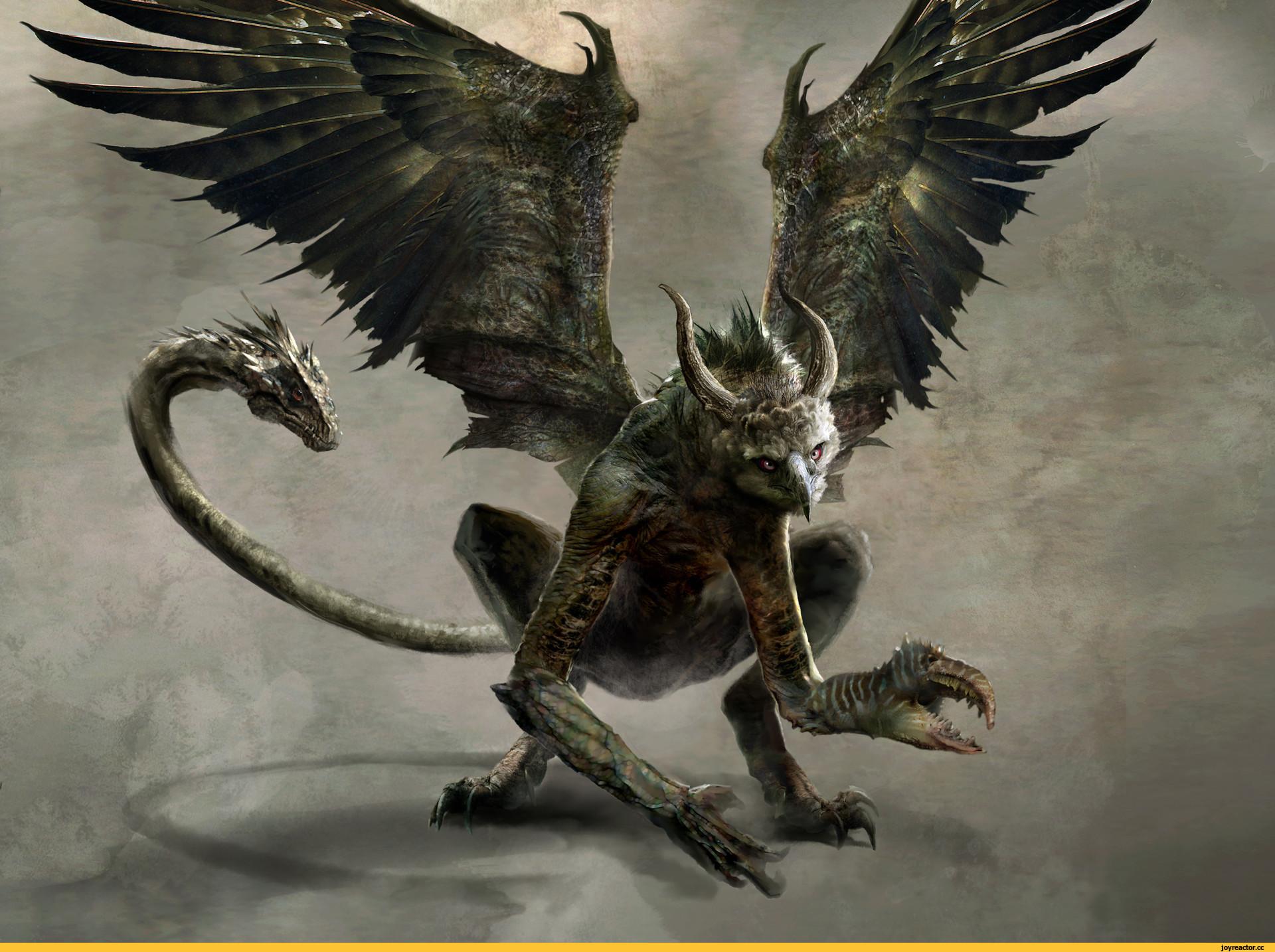 Что такое химера: вся информация о мифологическом монстре  :: syl.ru