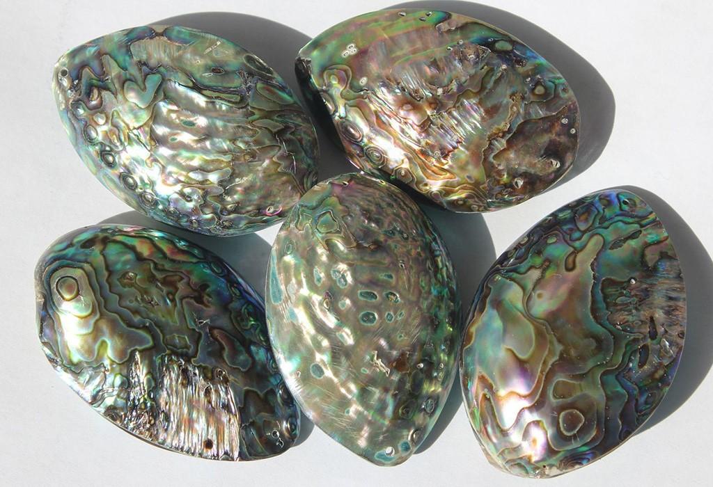 Перламутр — что за камень, какие у него магические свойства, чем отличается от жемчужины и кому по знаку зодиака подходит перламутр