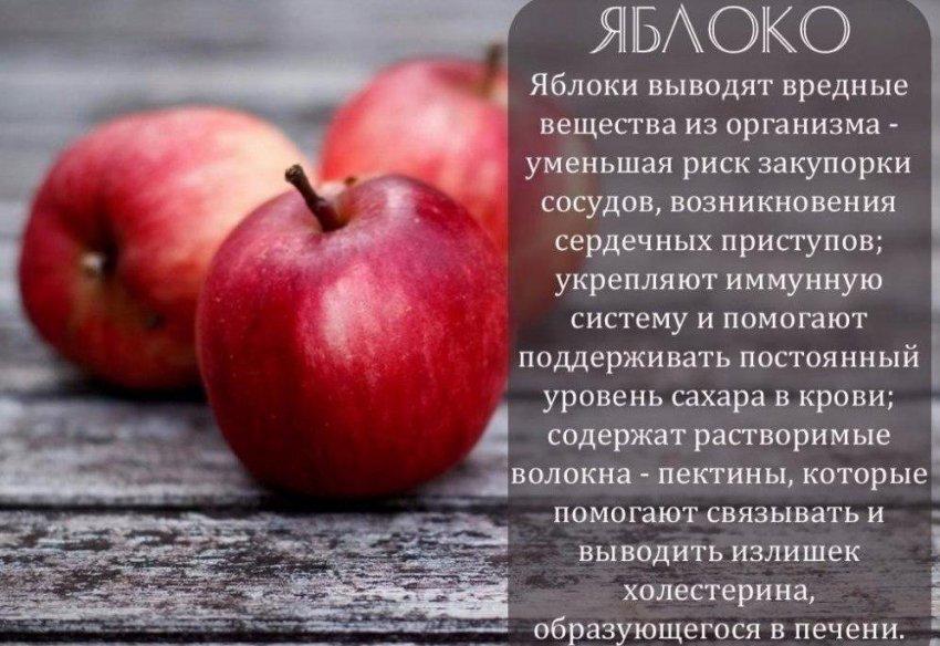 Яблоко – это фрукт или ягода?