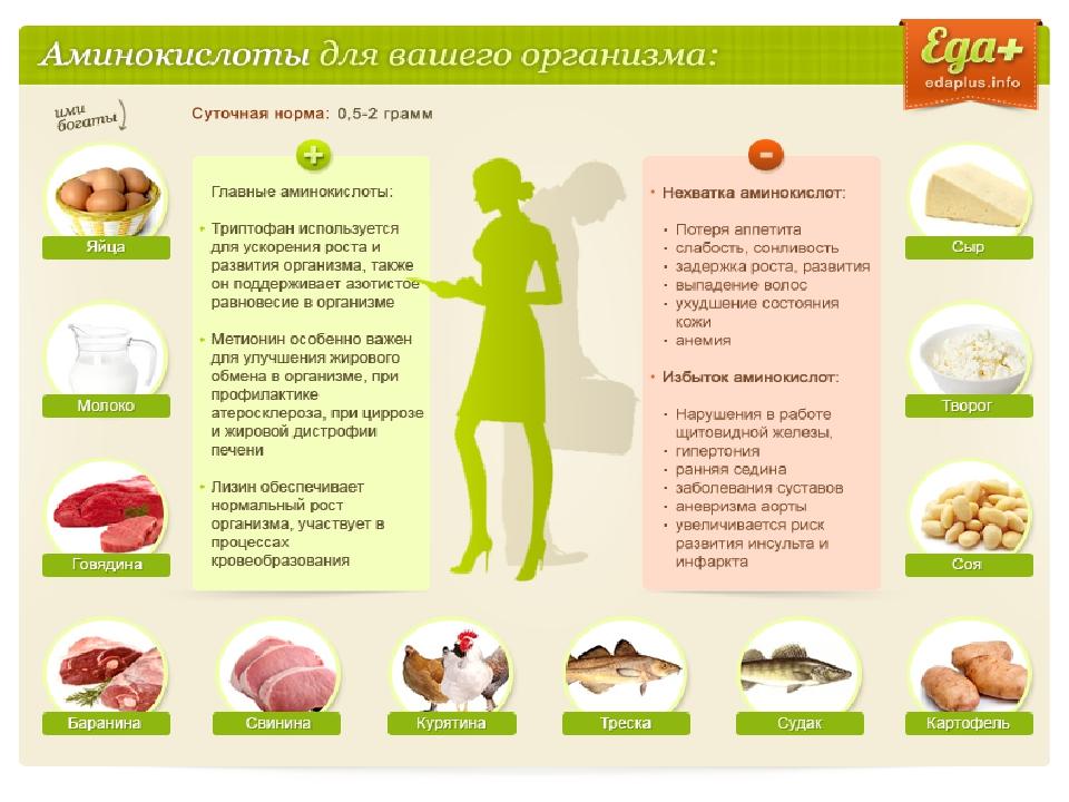 Содержит источник фенилаланина, что это значит - питание и диета 2020