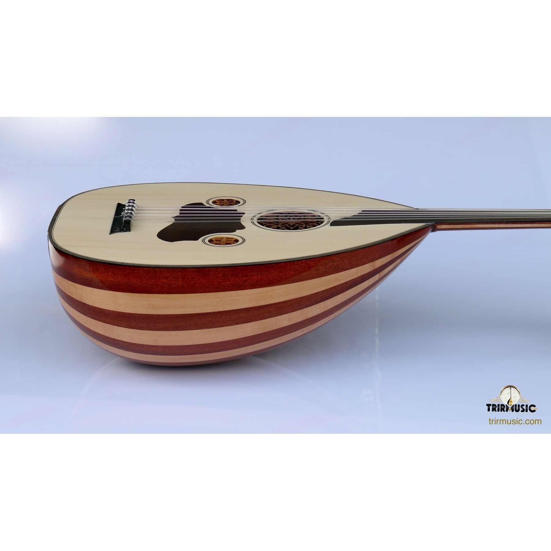 Уд (музыкальный инструмент) — википедия. что такое уд (музыкальный инструмент)