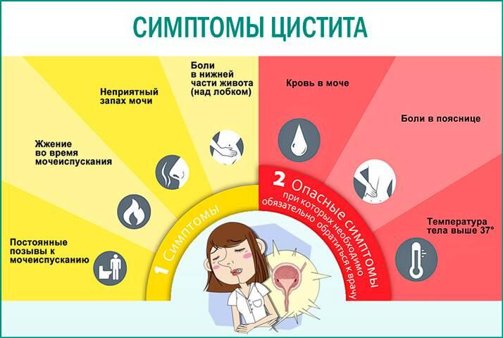Цистит - признаки, симптомы, причины, диагностика и способы лечения заболевания
