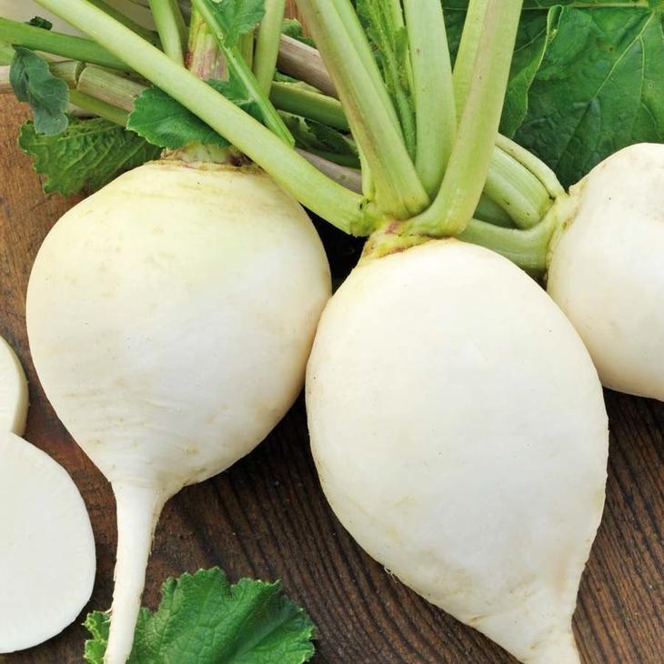 Дайкон (редька японская, китайская или белый редис) - что это такое, фото, особенности и выращивание из семян в открытом и защищенном грунте, «саша» и другие сорта