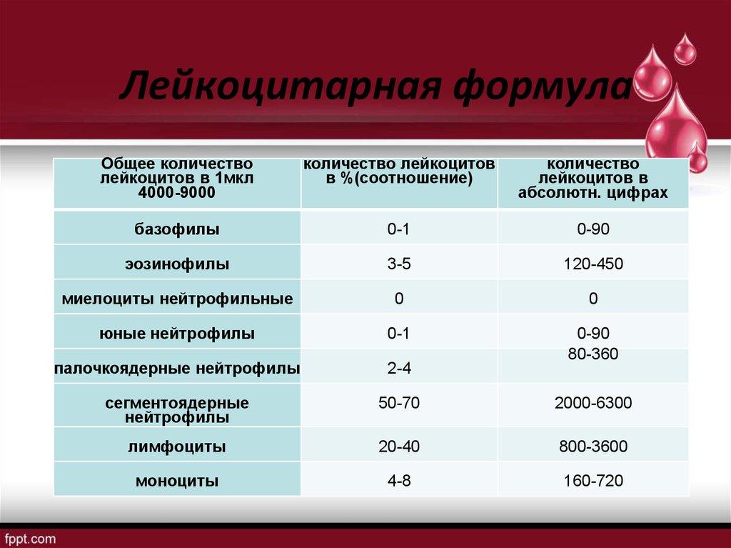 Лейкоцитарная формула — википедия