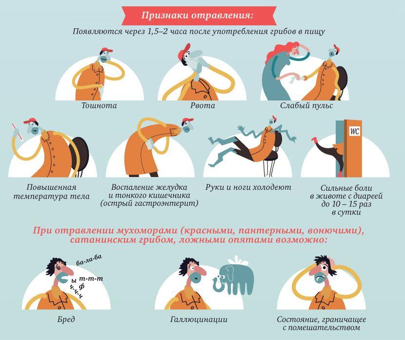 Виды пищевых отравлений, симптомы, рекомендации посетителю аптеки