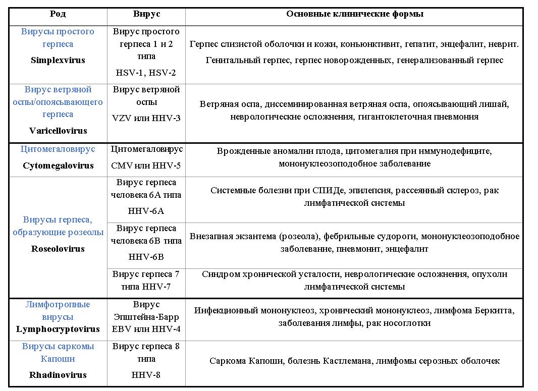 Герпес 6 типа: симптомы, лечение
