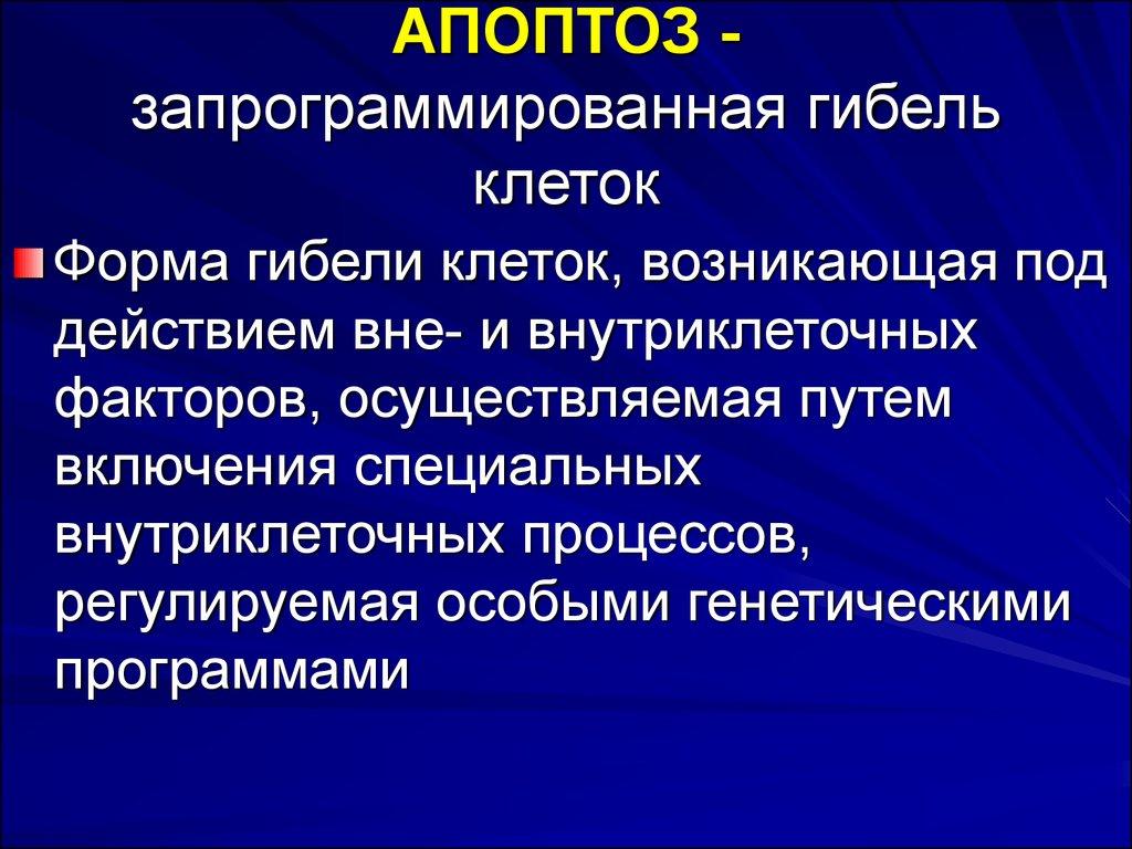 Апоптоз • ru.knowledgr.com