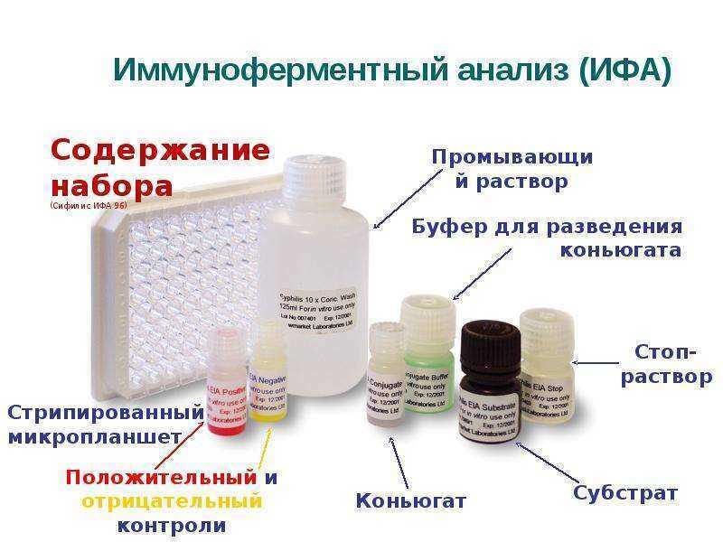 При каких заболеваниях назначается ифа анализ