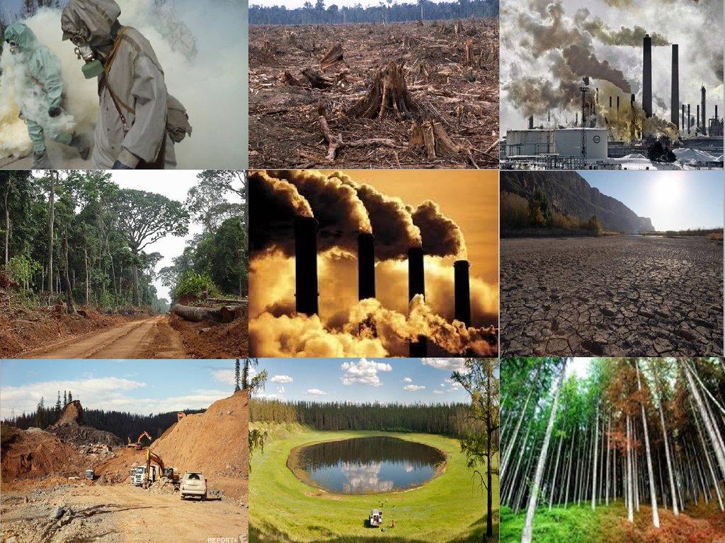 Антропогенные факторы влияющие на окружающую среду