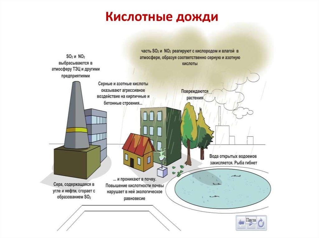 Кислотный дождь: что такое кислотные осадки, основной компонент, как образуются, чем опасны кислотные дожди