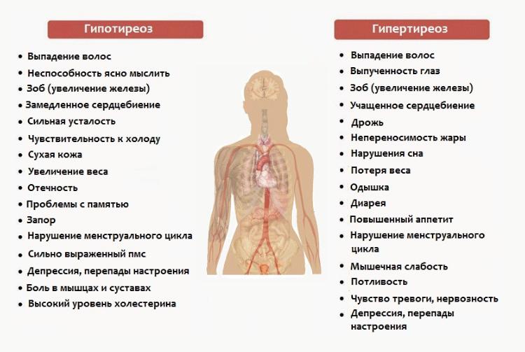 Диагностика тиреотоксикоза, анализы и лечение заболевания