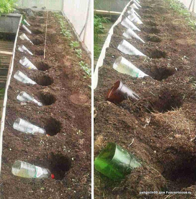 Для чего нужен компост и как его сделать самостоятельно?