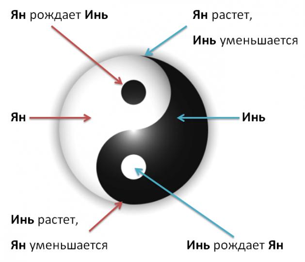 Инь янь – что означает