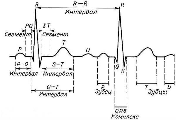 Ускоренный синусовый ритм сердца что это такое