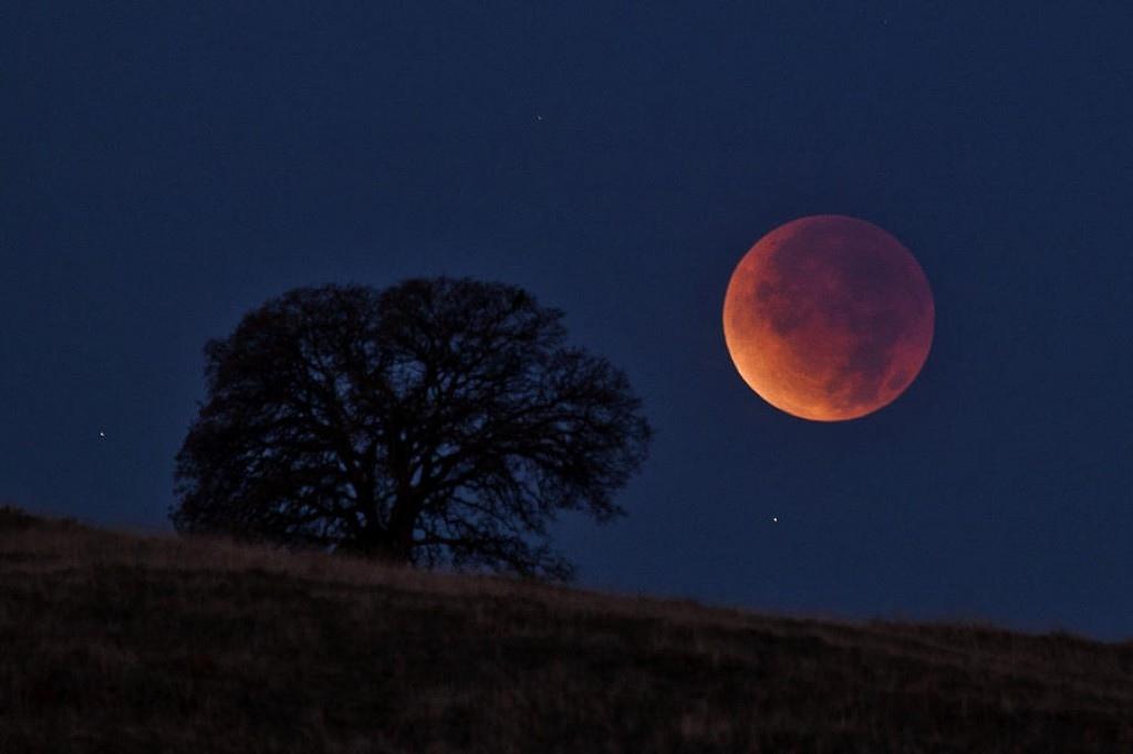 Прошлой ночью было лунное затмение. что о нем нужно знать и когда будет следующее