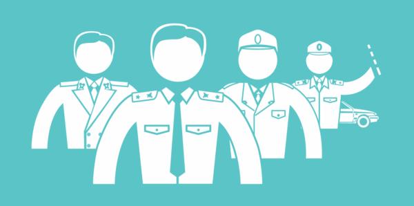 Негосударственные правоохранительные органы: виды, функции, общая характеристика