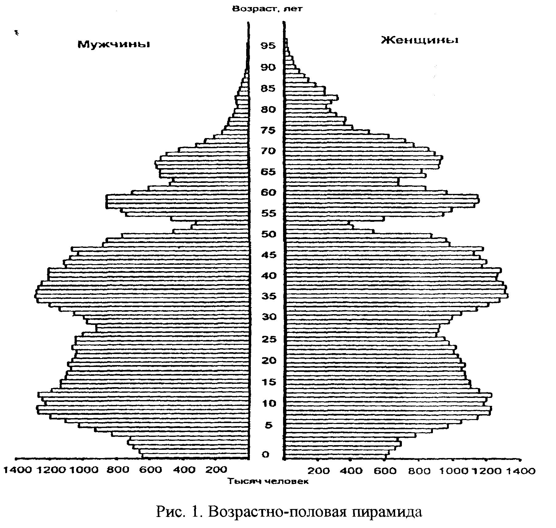 Возрастно-половая пирамида