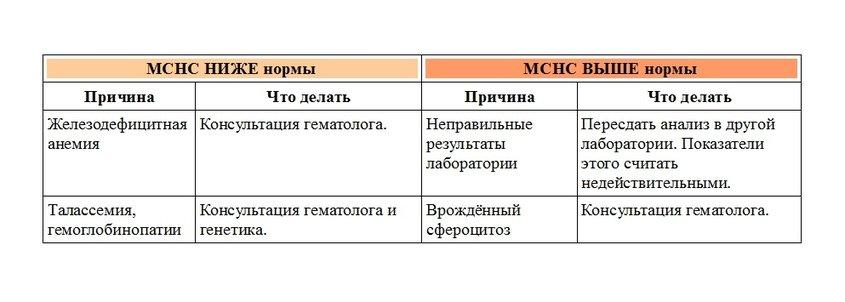 Анализ mchc: нормы, расшифровка и особенности