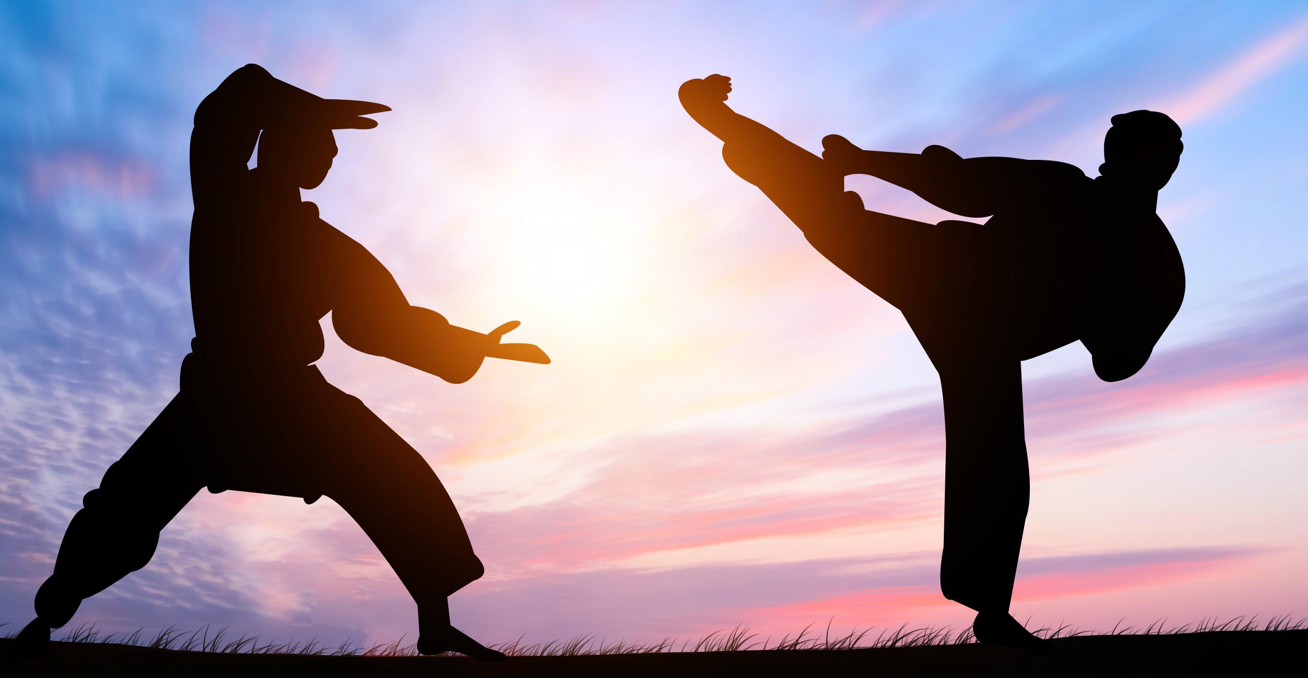 История кунг-фу в китае, история возникновения кунг фу   чайна хайлайтс