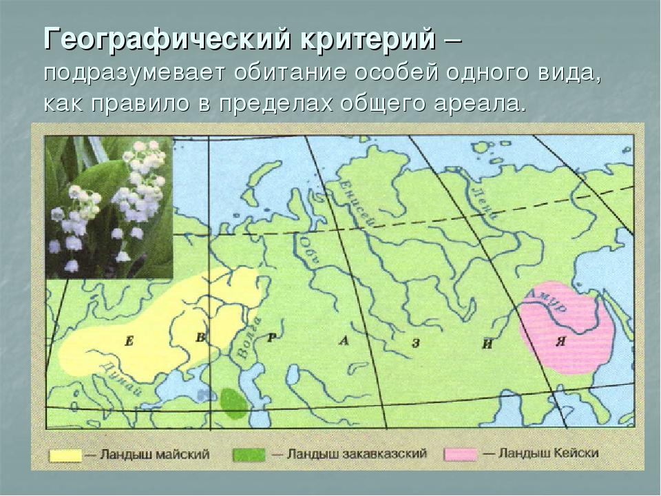 Ареал — википедия с видео // wiki 2