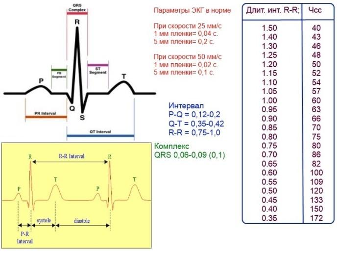 Что такое электрокардиография / экг, расшифровка и показания