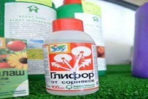 Глифос (препарат-гербицид от сорняков): свойства, применение