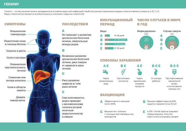 Гепатит с - что это за болезнь, как диагностируется и лечится