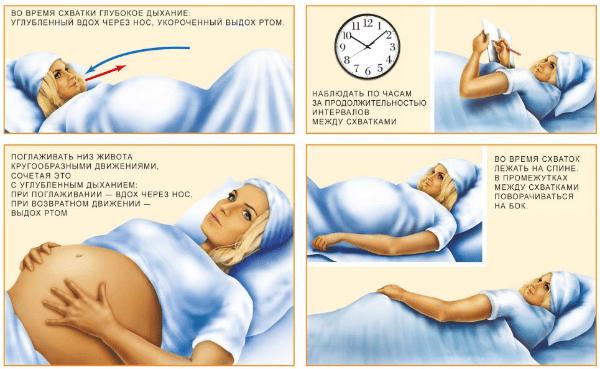Когда начинаются тренировочные схватки и как ощущаются: за сколько до родов начинаются и как долго длятся при беременности, с какой недели ощущения ложных схваток