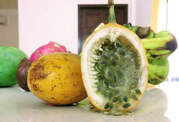 Маракуйя: полезные свойства и противопоказания для организма