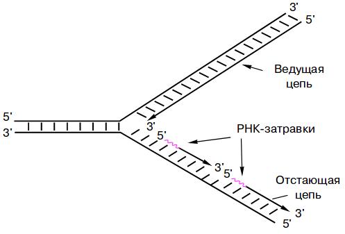 Путеводитель по репликации баз данных / хабр