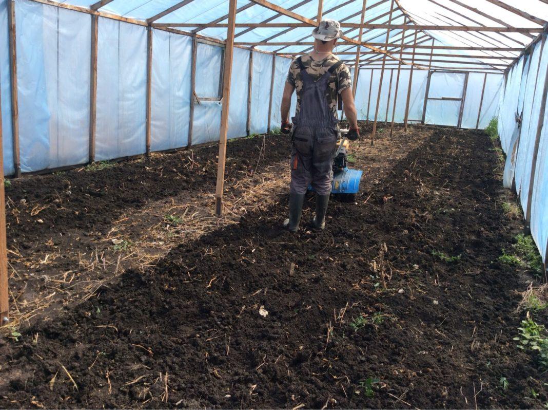 Что такое плодородие почвы?