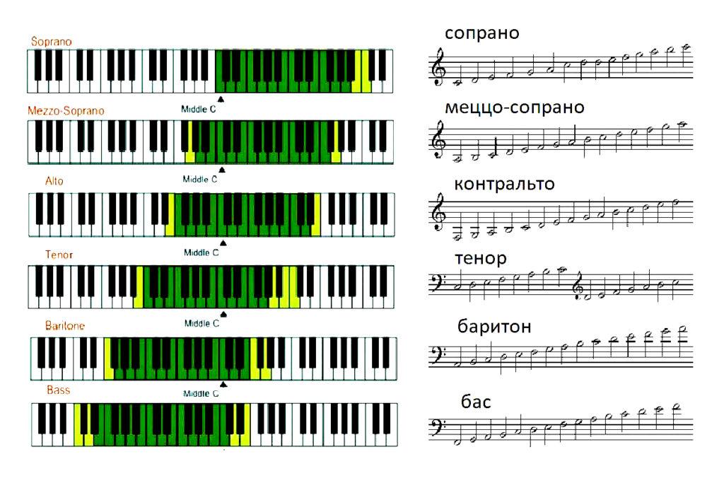 Как определить тип голоса и какие виды существуют?