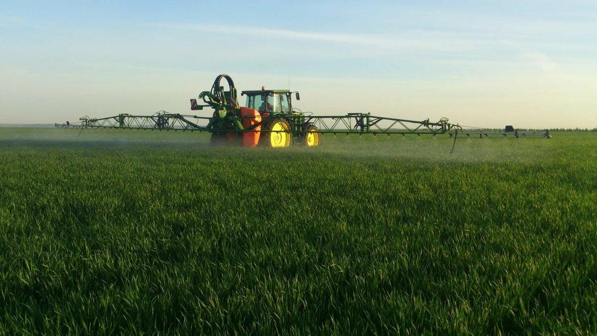 Пестициды: что это такое, виды, правила применения, влияние, польза и вред