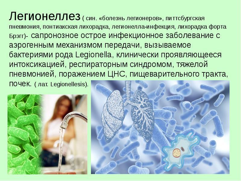 Болезнь легионеров (легионеллез) что это такое причины и симптомы