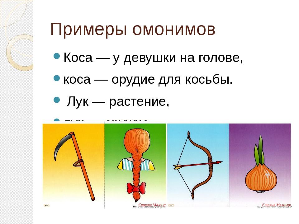 Омонимы — википедия с видео // wiki 2
