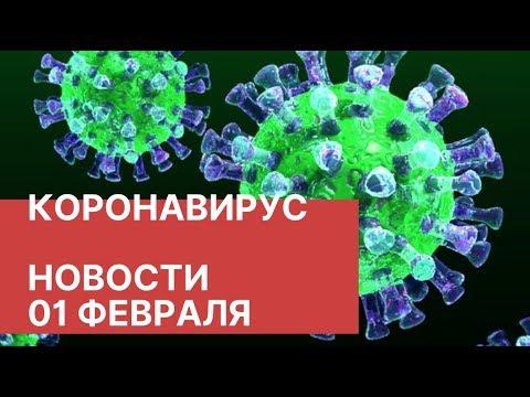 Коронавирус у человека: формы, симптомы, подходы к лечению