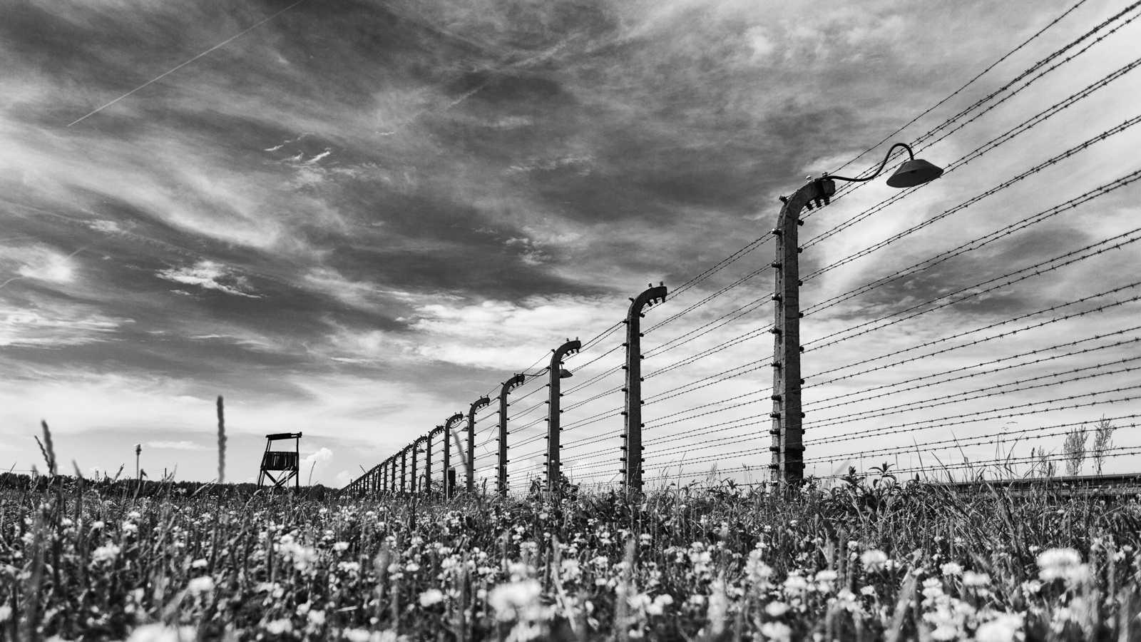 Холокост в россии — википедия. что такое холокост в россии