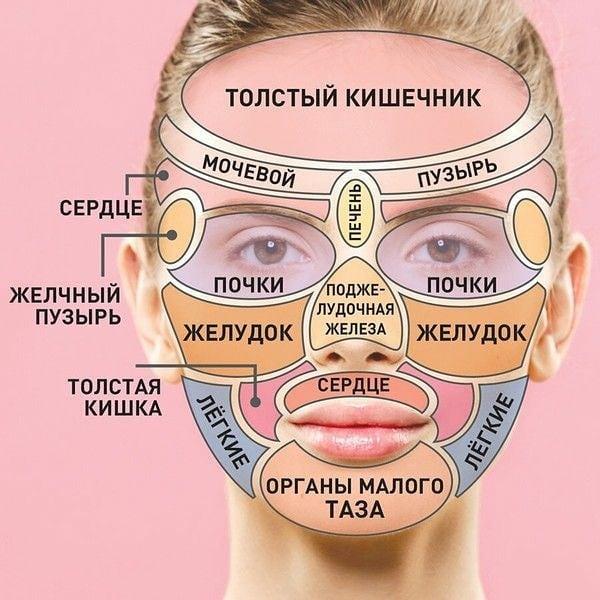 За какие внутренние органы отвечают прыщи на лице
