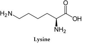 Что такое лизин в каких его продуктах больше