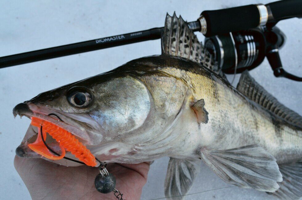 Любительская рыбалка на джиг для начинающих: выбор снасти