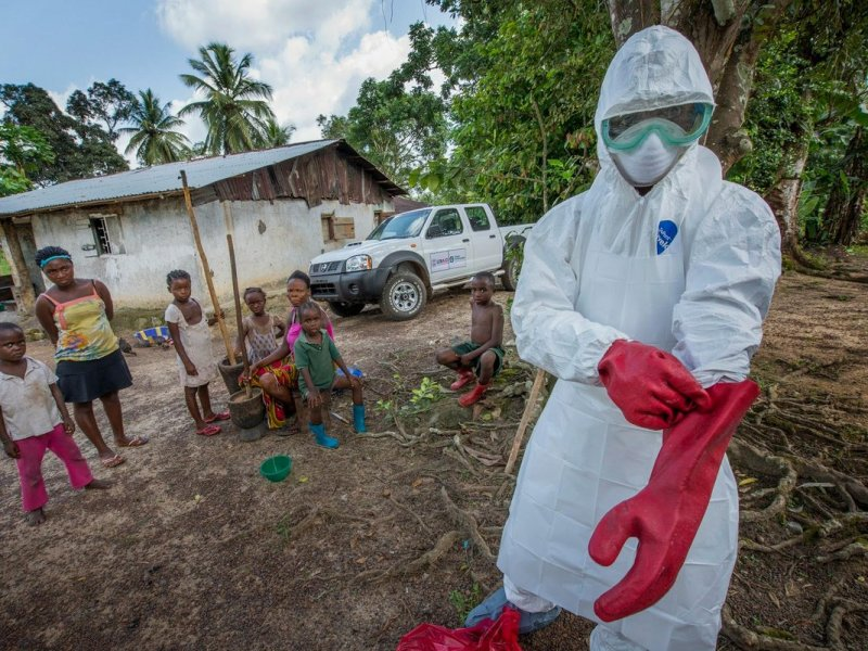 Вирус эбола википедия