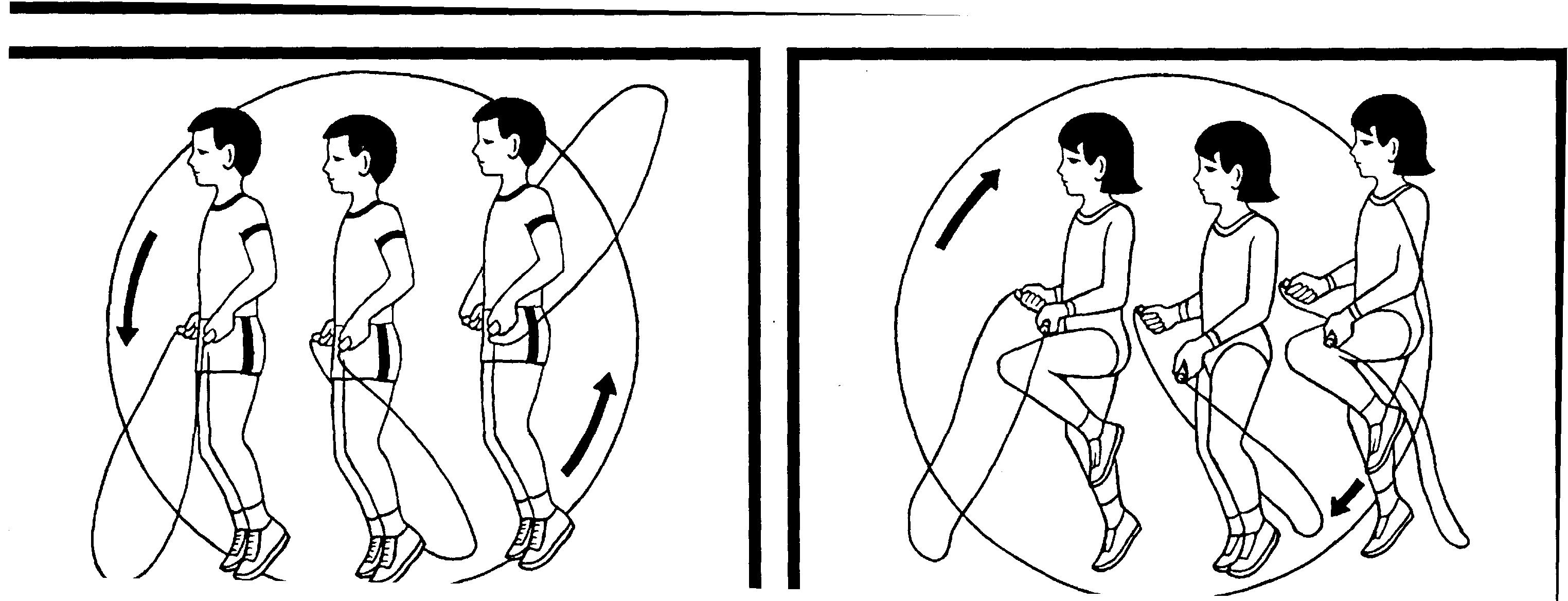 Виды скакалок: как правильно выбрать скакалку по росту