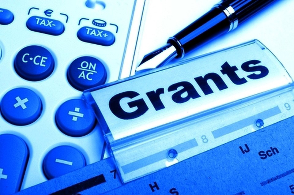 Гранты для нко – что это такое, какие бывают и как их получить. виды грантов некоммерческих организаций