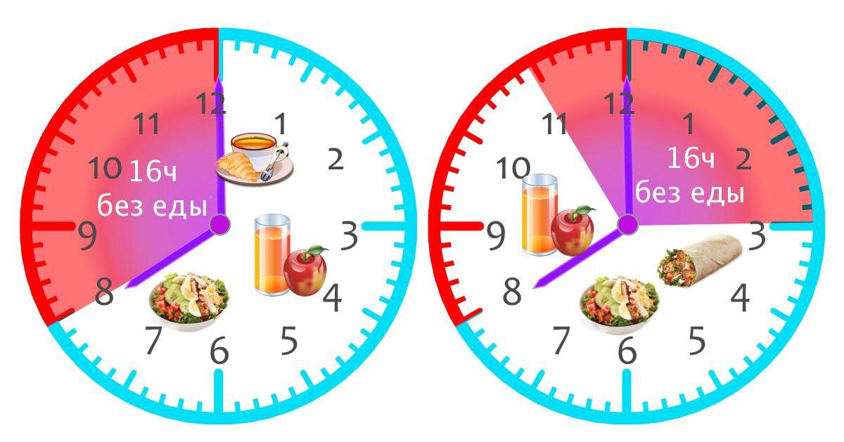 Интервальное голодание 16:8 - результаты научных работ - medical insider