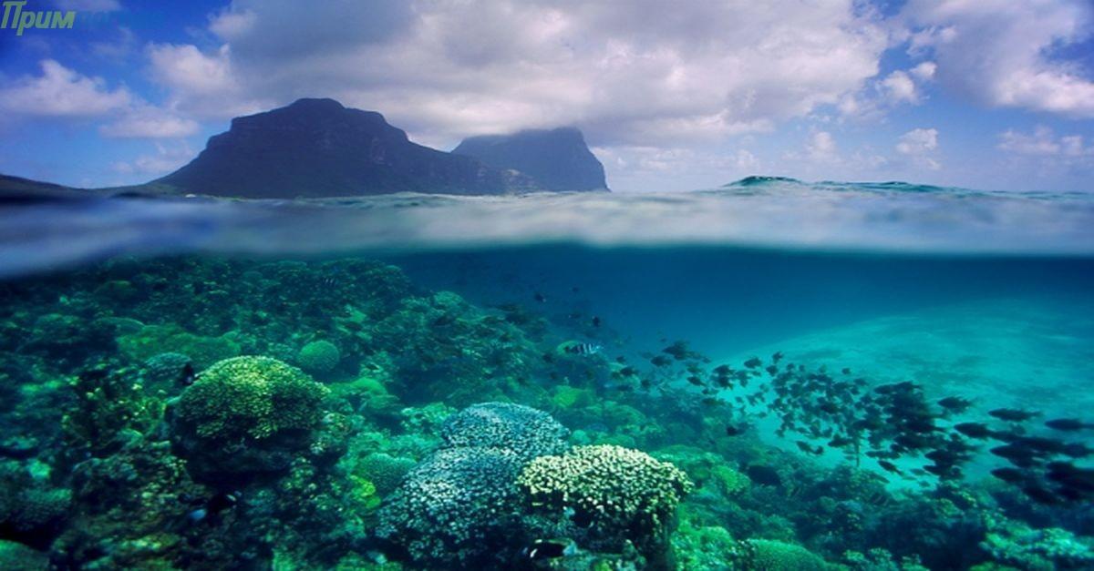 Эль-ниньо – самое мощное течение в мировом океане[4]