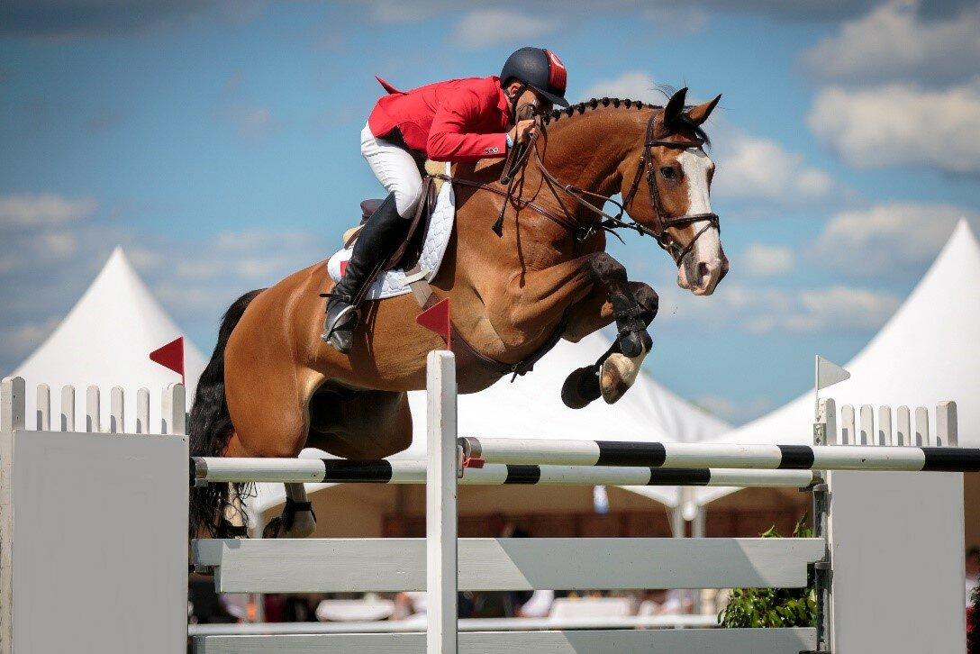 Секреты и тонкости конного спорта: от древнего рима до наших дней