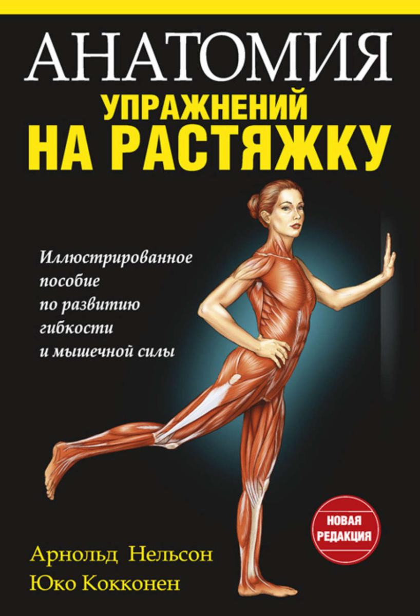 Упражнения для кора для мужчин дома. что такое мышцы кора, где находятся и за что отвечают? что такое мышцы кора