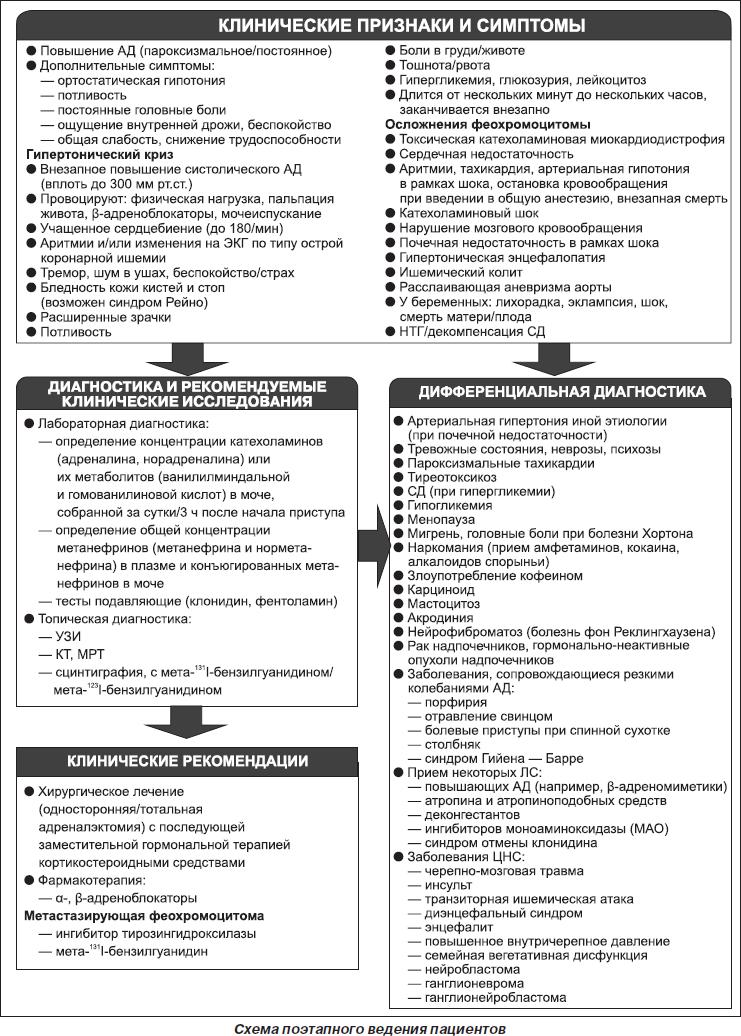 Феохромоцитома надпочечника — причины и лечение