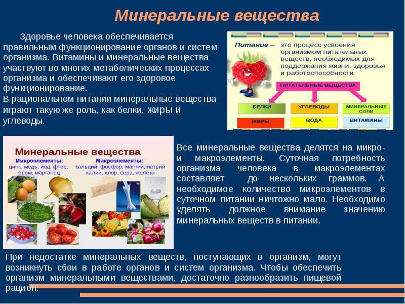 Всё, что нужно знать о функциях и значении микронутриентов для организма