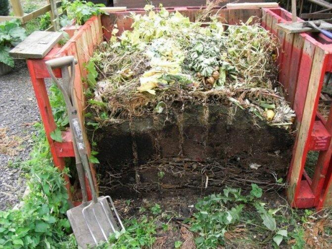 11 способов применения компоста на участке